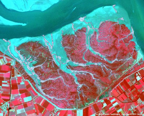 Modelling salt marshes with the aid of satellite imaging